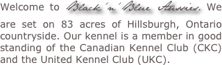 Welcome to Black'n'Blue Aussies. We are set on 83 acres of Hillsburgh, Ontario countryside. Our kennel is a member in good standing of the Canadian Kennel Club (CKC) and the United Kennel Club (UKC).
